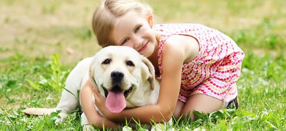Ventajas de tener una mascota en casa - Perros para tener en casa ...