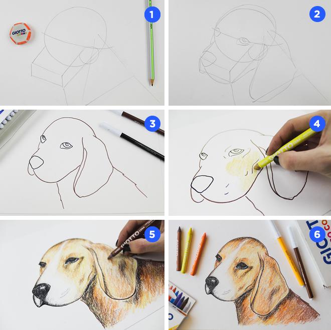 Cómo dibujar un Perro con Ceras y Rotuladores Giotto