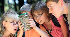 Bosque Escuela. La naturaleza como centro educativo
