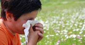 Cómo identificar y tratar la Rinitis Alérgica infantil