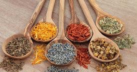 Cómo introducir las hierbas y especias aromáticas en la dieta del niño