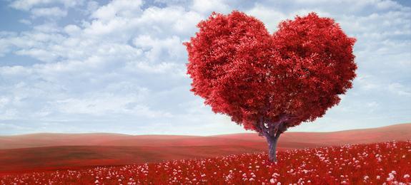 Test romántico para chicas - Tests de Amor en Dibujos.net