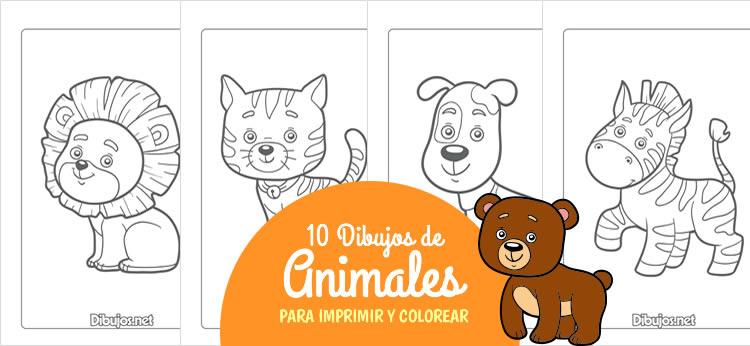 10 Dibujos de Animales para Imprimir y colorear - Dibujos.net