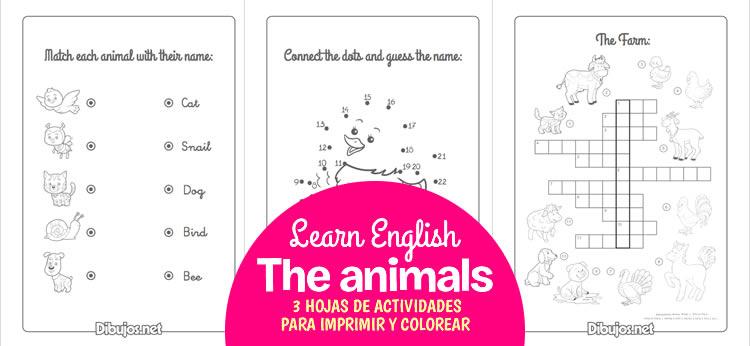 3 hojas de actividades para aprender los Animales en Inglés