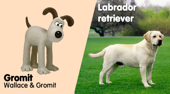 Gromit de 'Wallace & Gromit' es un Labrador retriever