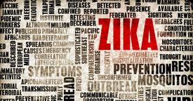 Como protegerse del virus Zika si estás embarazada