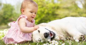 Los beneficios de la interacción entre niños y mascotas