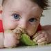 Los beneficios del aguacate en bebés