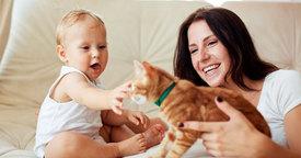Peligros del bebé con las mascotas